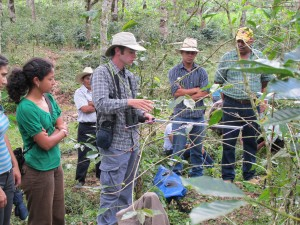 UMass and UNAH students (Brett Bailey and Fabiola Rodriguez) teamed in the field for habitat surveys at coffee sites with Cooperative COMISUYL