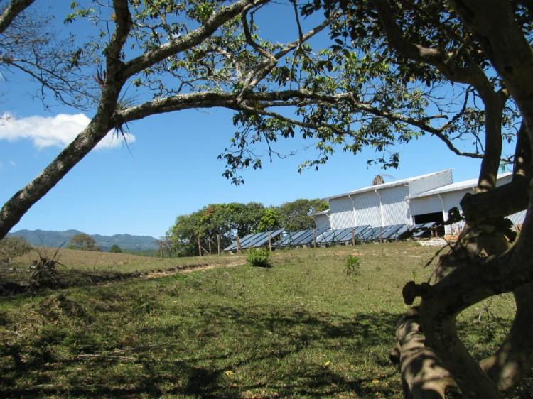 Off Grid Plant 940x705