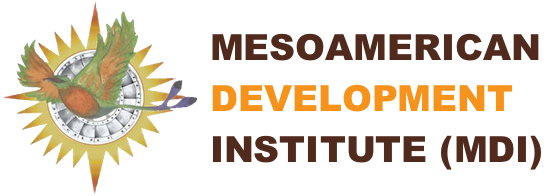 Mesoamerican Development Institute